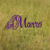 Video Tutorial Marro Organics